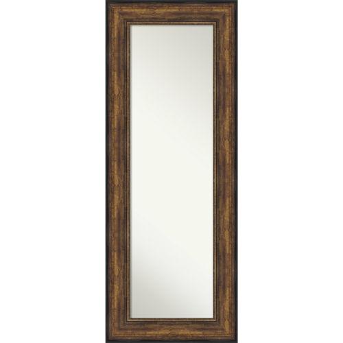 Bronze 22W X 56H-Inch Full Length Mirror