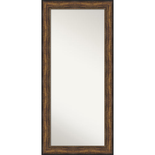 Bronze 32W X 68H-Inch Full Length Floor Leaner Mirror