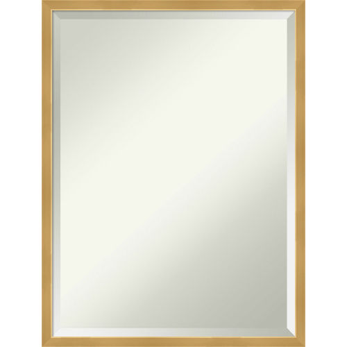 Polished Brass and Gold 19W X 25H-Inch Decorative Wall Mirror