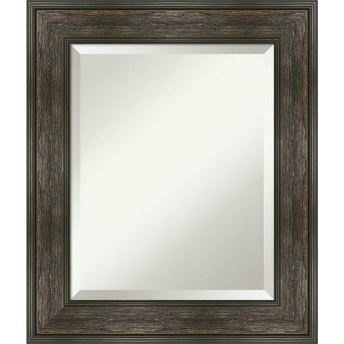 Rail Brown 22W X 26H-Inch Bathroom Vanity Wall Mirror