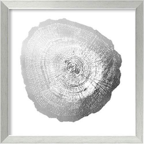 Silver Foil Tree Ring IV Metallic Print by Vision Studio: 20 x 20-Inch Framed Art