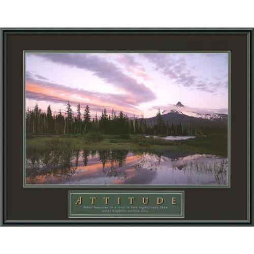 Amanti Art Attitude: Moonrise: 29 x 23 Print Reproduction