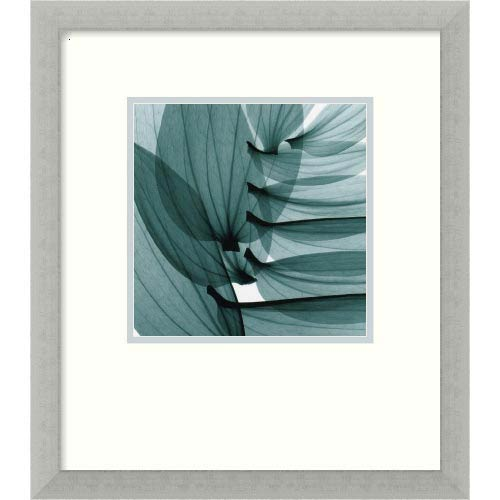 Amanti Art Lily Leaves by Steven N. Meyers: 15 x 17 Print Reproduction