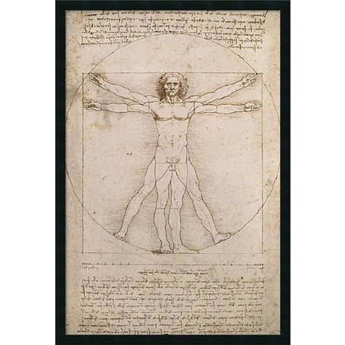Proportions of the Human Figure (Vitruvian Man) by Leonardo da Vinci: 26 x 38 Print Reproduction