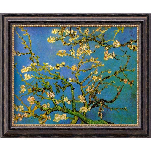 Amanti Art Almond Branches in Bloom by Vincent van Gogh: 24 x 20 Distressed Black Framed Giclee Canvas