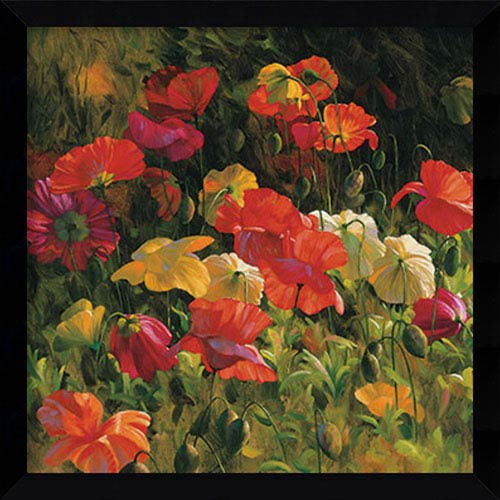 Amanti Art Iceland Poppies by Leon Roulette: 32 x 32-Inch Framed Art Print
