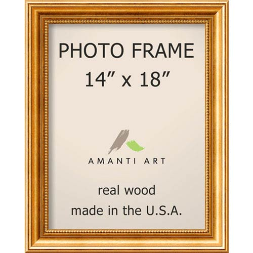 Amanti Art Townhouse Gold: 17 x 21-Inch Picture Frame