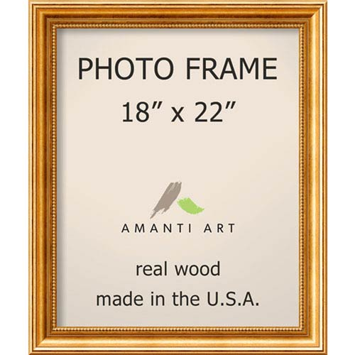Townhouse Gold: 21 x 25-Inch Picture Frame