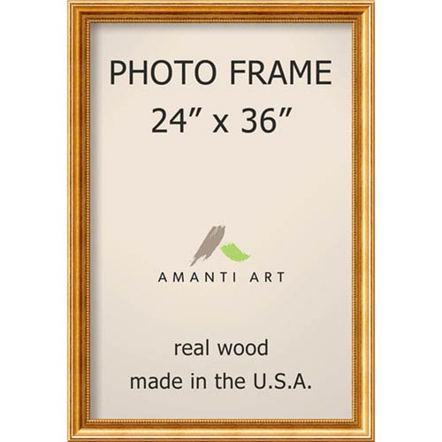 Townhouse Gold: 27 x 39-Inch Picture Frame