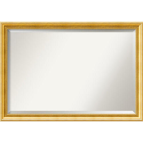 Townhouse 39 x 27-Inch Gold Wall Mirror