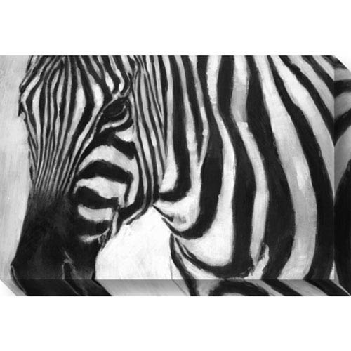 Zebra by Art Marketing: 30 x 20-Inch Canvas Art