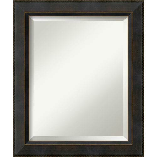 Bronze 20 x 24-Inch Medium Vanity Mirror