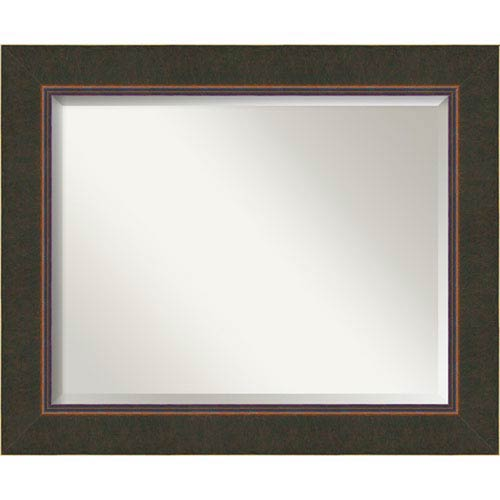 Amanti Art Dark Bronze 34 x 28-Inch Large Vanity Mirror