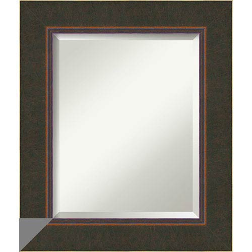 Dark Bronze 22 x 26-Inch Medium Vanity Mirror
