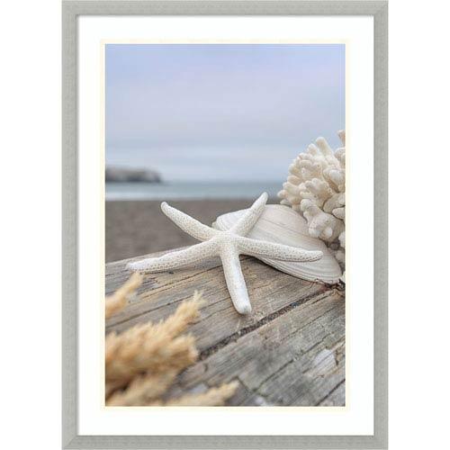 Amanti Art Rodeo Beach Shells 13 by Alan Blaustein, 21 x 29 In. Framed Art