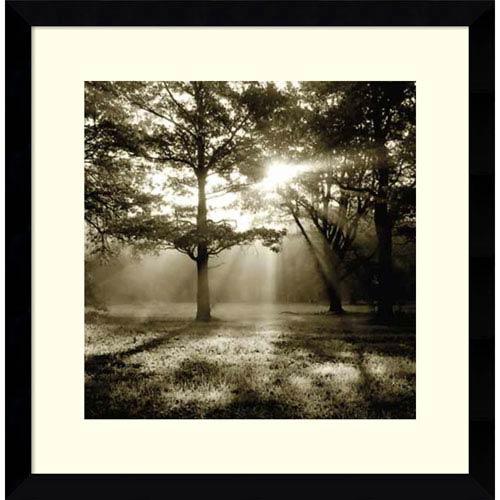 Amanti Art Wild Forest by Steven Mitchell, 17 x 17 In. Framed Art Print
