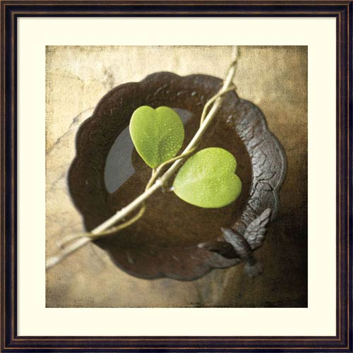 Amanti Art Entwined by Glen and Gayle Wans, 24 x 24 In. Framed Art Print