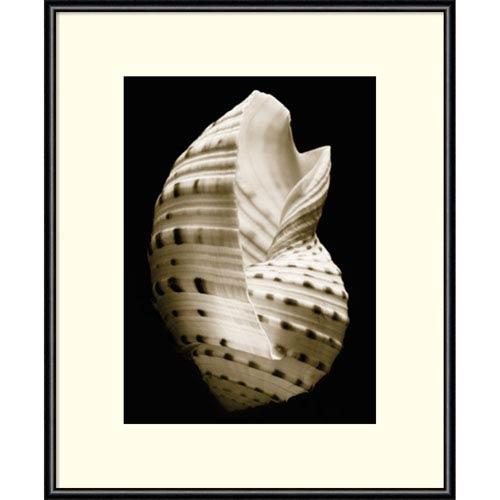 Amanti Art Tonna by Sondra Wampler, 11 x 14 In. Framed Art Print