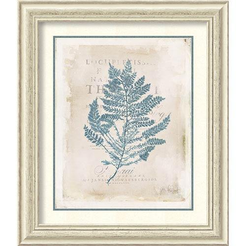 Amanti Art Sea Garden III by Katie Pertiet, 25 In. x 29 In. Framed Art
