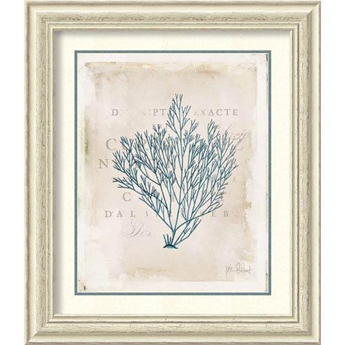 Amanti Art Sea Garden II by Katie Pertiet, 25 In. x 29 In. Framed Art