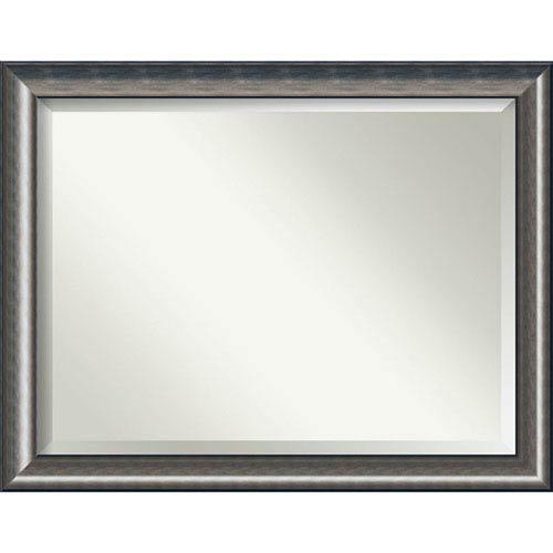 Quicksilver Scoop 46 x 36 In. Wall Mirror