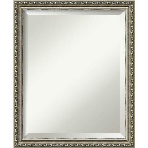 Parisian Silver 18.5 x 22.5 In. Bathroom Mirror