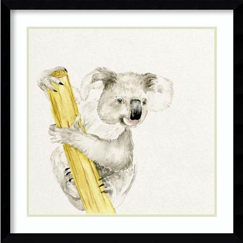 Baby Koala II by Melissa Wang, 23 In. x 23 In. Framed Art