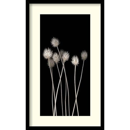 Amanti Art Dried Up by PhotoINC Studio, 18 In. x 30 In. Framed Art