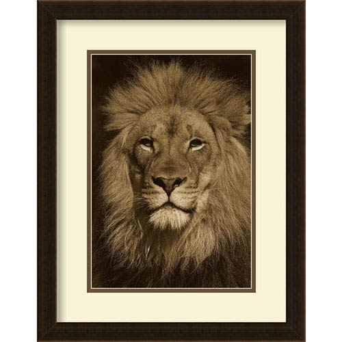 Amanti Art African Lion male portrait, native to Africa - Sepia by San Diego Zoo, 18 In. x 23 In. Framed Art