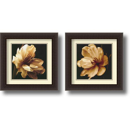 Timeless Grace - Set of Two by Charles Britt: 17.8 x 17.8 Framed Prints