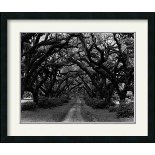 Amanti Art Path in the Oaks #2, Louisiana by Monte Nagler: 26 x 22 Framed Print