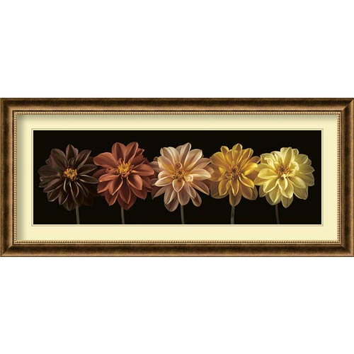 Amanti Art Floral and Still Life Salute by Assaf Frank: 43.75 x 19.75 Print Reproduction
