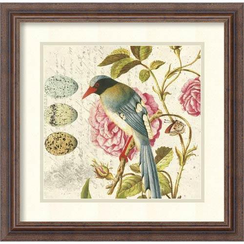 Amanti Art Bird Study 1 by Paula Scaletta: 18.25 x 18.25 Print Reproduction