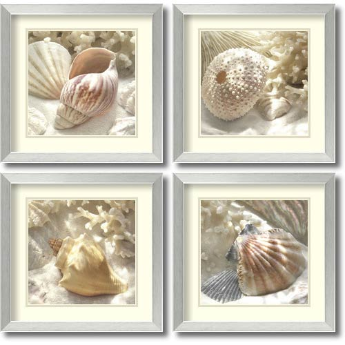 Amanti Art Coral Shell by Donna Geissler: 17.88 x 17.88 Print Reproduction, Set of Four