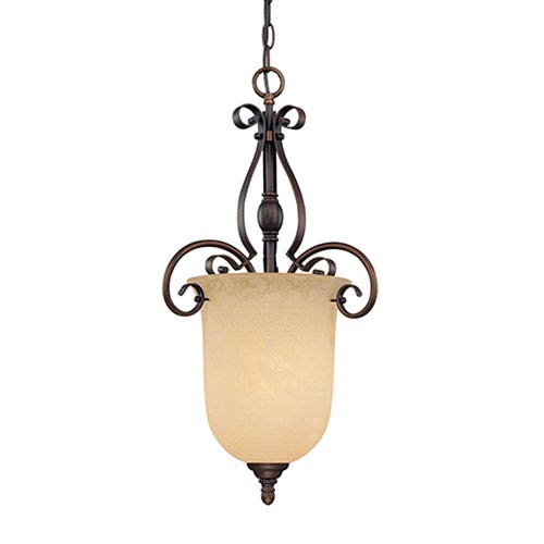 Millennium Lighting Auburn Rubbed Bronze One-Light Pendant with Turinian Scavo Glass