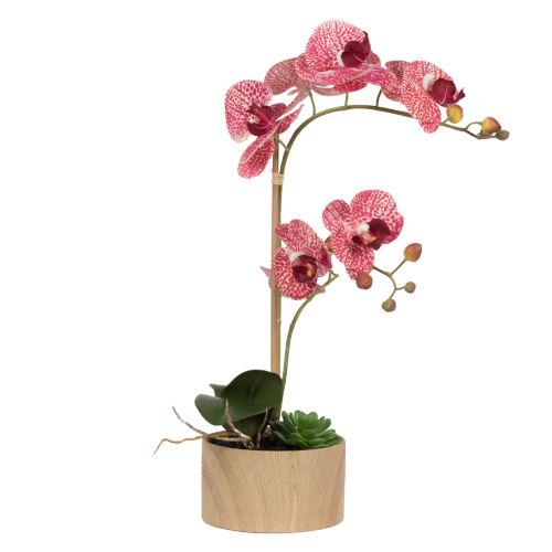 Pink Mauve Orchid Arrangement