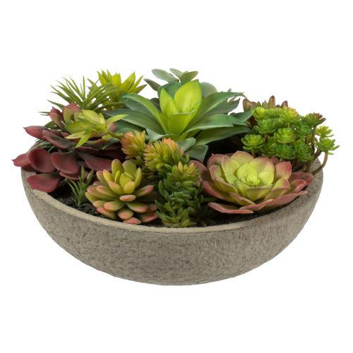 Green Mixed Succulent in Concrete Pot
