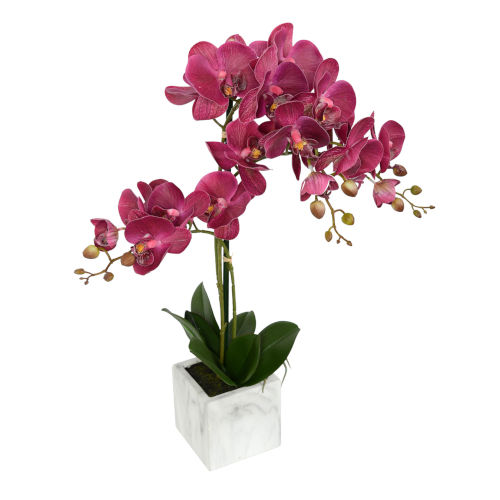 White Plum Real Touch Phalaenopsis in Metal Pot