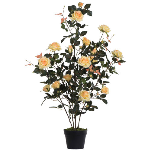 Yellow 45-Inch Rose Plant in Pot