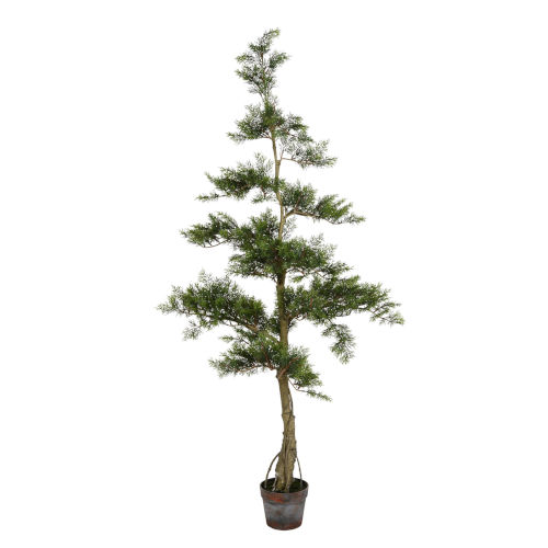 Green 5-Feet Potted Cedar Tree with 323 Leaves