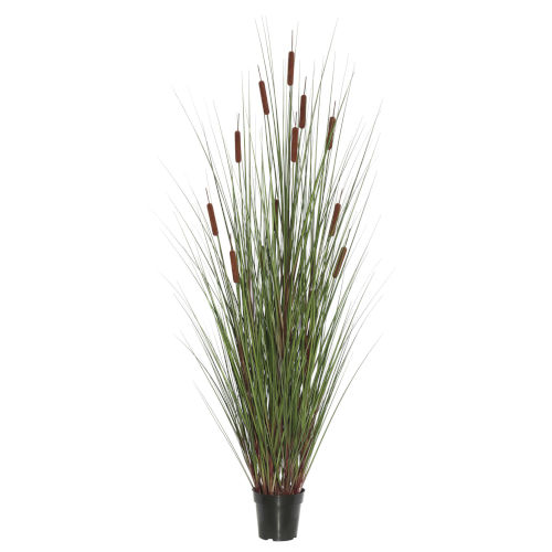 Multicolor 24-Inch Grass with Five Cattails Potted
