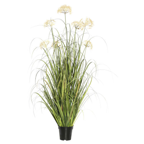 Multicolor 36-Inch Dandelion Grass in Pot