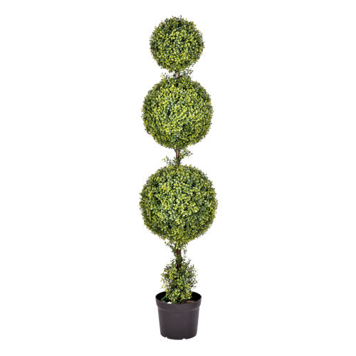 Green 5-Feet Boxwood Triple Ball in Pot with UV Resistant