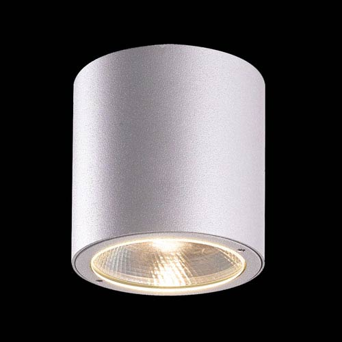 Sky Light Grey LED Outdoor Wall Sconce