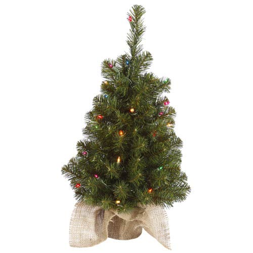 Felton Pine Green 24-Inch Tree with 35 Multicolor Lights