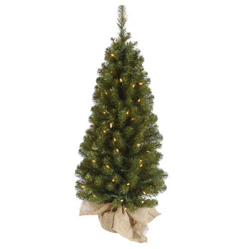 Green 36-Inch Felton Pine Tree with 50 Clear Lights