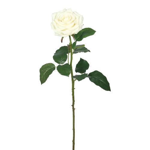 Vickerman Real Touch Cream Rose, Set of Three
