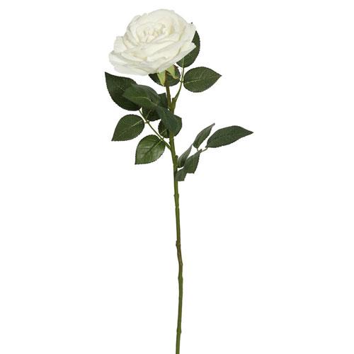 Vickerman White Rose Stem, Set of Three