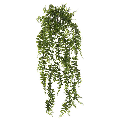 30 In. Green Bucler Fern Vine