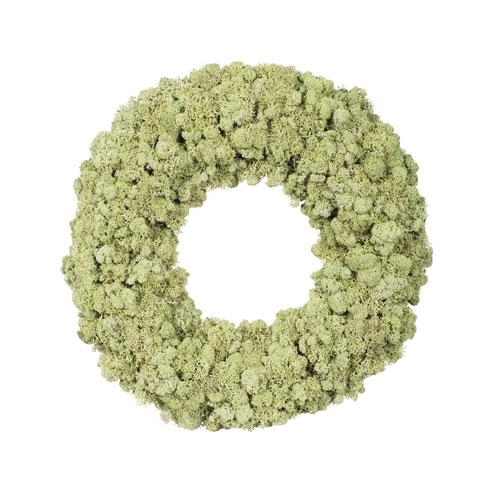 17.5 In. Reindeer Moss Wreath